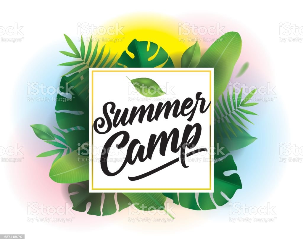 summer camp vector background for posters and banners