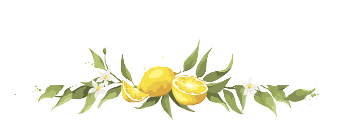 Summer card with lemon branch.