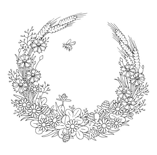 Summer cornflowers rye chamomile floral elegant romantic old fashioned wreath contour coloring page vector art illustration