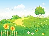 Vector cartoon illustration of a beautiful summer country garden