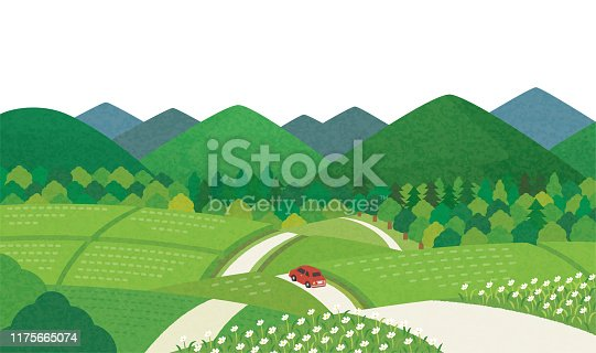 istock Summer countryside scenery 1175665074