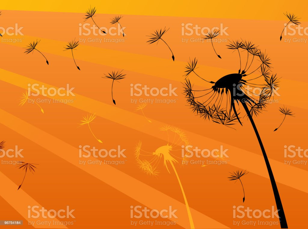 Summer dandelion royalty-free stock vector art