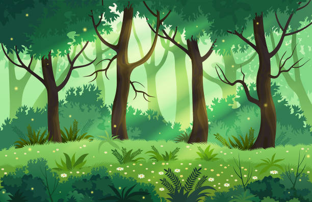 Summer fantasy forest landscape vector illustration. Summer forest glade with flowers and lush trees. woodland stock illustrations