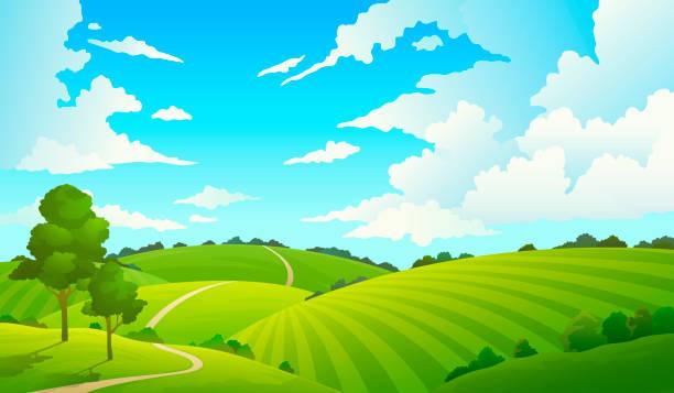 bildbanksillustrationer, clip art samt tecknat material och ikoner med fältet sommarlandskap. natur hills fält blå himlen moln sol landsbygden. cartoon gröna träd och gräs mark på landsbygden. - fält