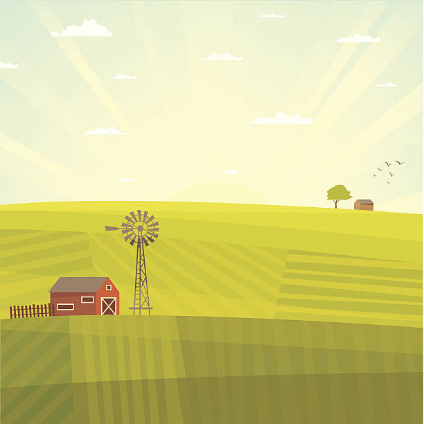 summer field landscape - kırsal manzara stock illustrations