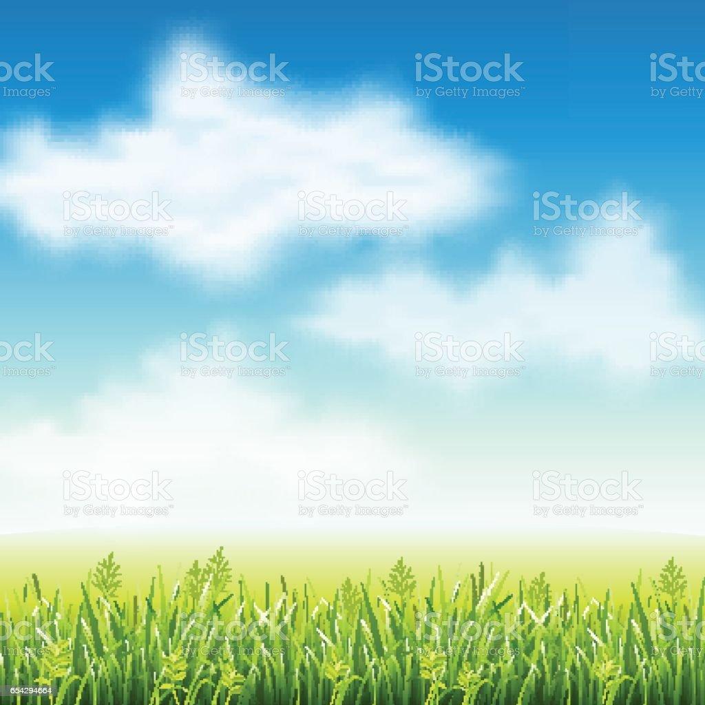 Summer field of grass vector art illustration
