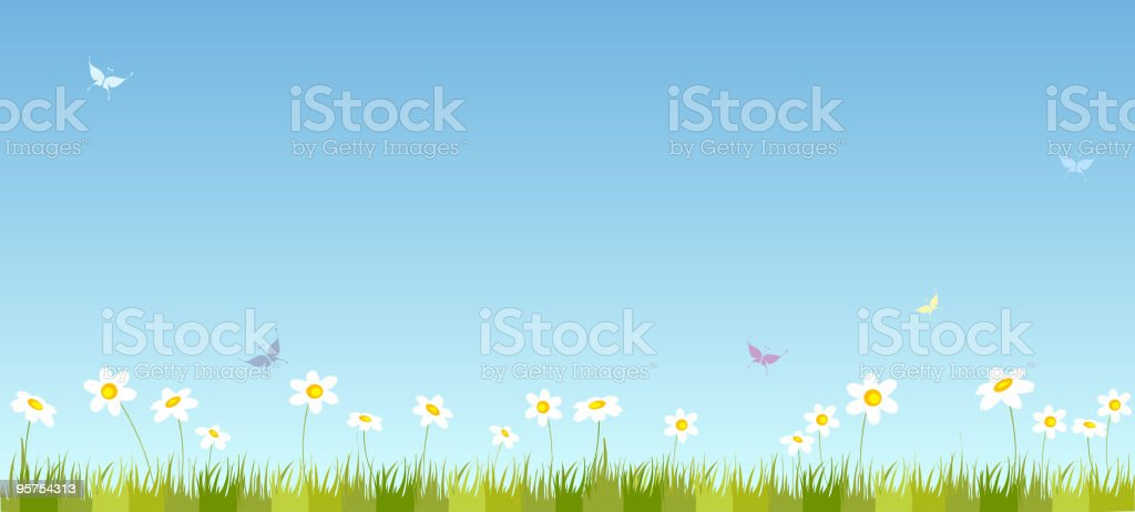Summer field vector art illustration