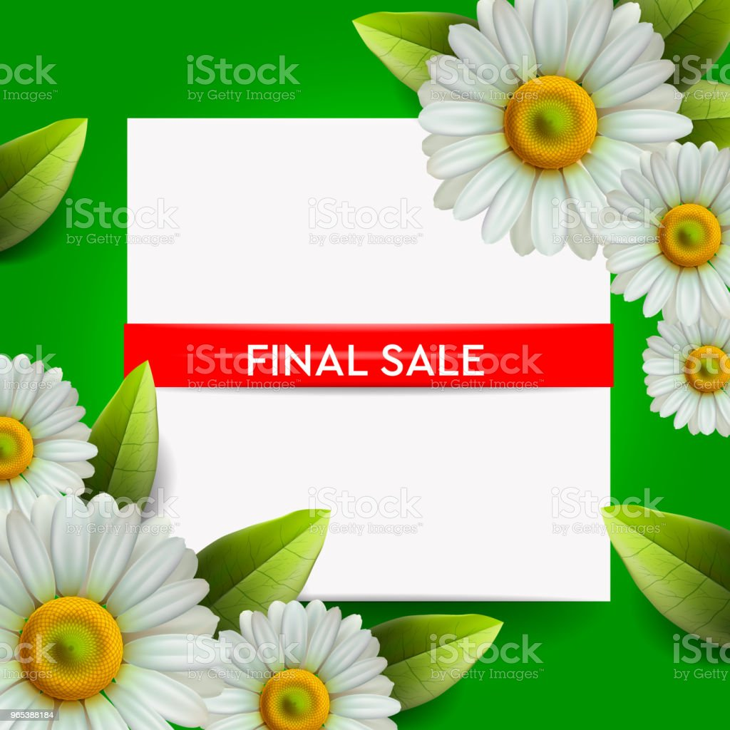 Summer Final Sale lettering and bouquet realistic daisy, camomile flowers on green background, online shopping, store, advertising poster, vector illustration. royalty-free summer final sale lettering and bouquet realistic daisy camomile flowers on green background online shopping store advertising poster vector illustration stock vector art & more images of communication