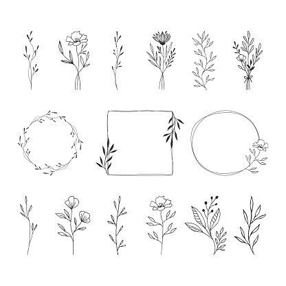 Summer floral frames, borders, design element. Flowers, leaves, herbs, bouquets. Vector isolated illustration.