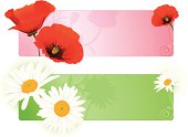 Vector illustration of summer flower banners with poppy and chamomile