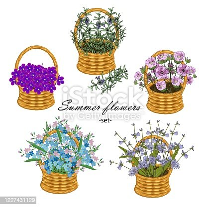 istock Summer flower set. Space, forget-me-not, chicory, forget-me-not, violet in wicker basket art design stock vector illustration for product desig 1227431129
