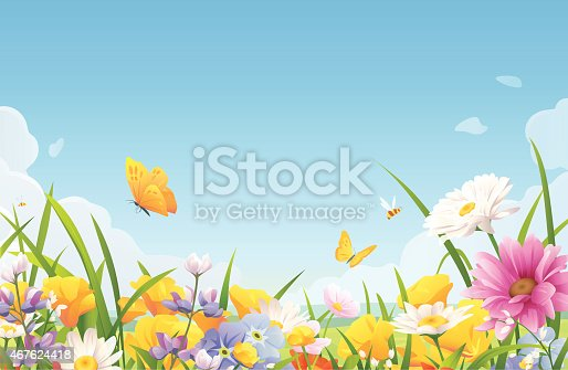 istock Summer Flowers On A Meadow 467624418