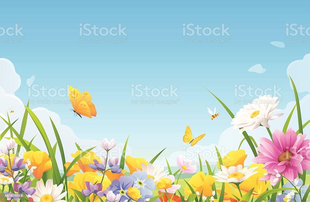 Sommer Blumen auf einer Wiese – Vektorgrafik