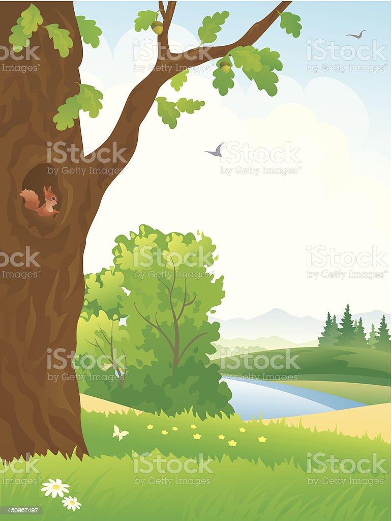 Summer forest scene royalty-free stock vector art