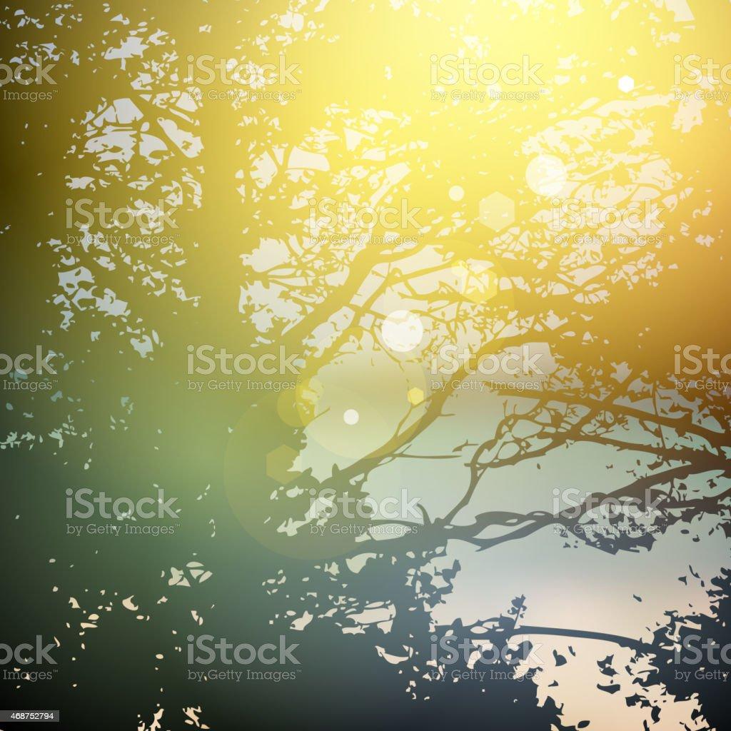 夏の森の木自然光が緑の木の自然の緑の背景 のイラスト素材 468752794