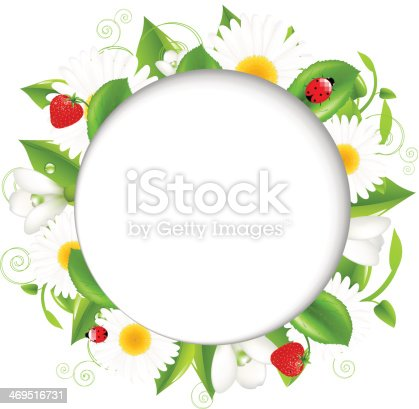 Summer Frame With Camomiles And Ladybug Stock Vector Art More