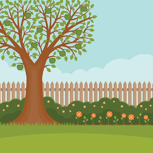 ilustraciones, imágenes clip art, dibujos animados e iconos de stock de jardín de verano hermoso paisaje. herramientas de jardín. - backyard