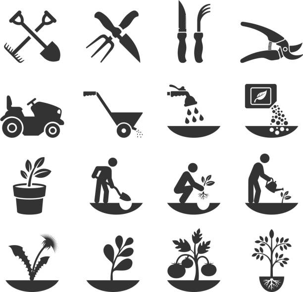 Summer Gardening and Farming Crops with Equipment Gardening and Farming Crops with Equipment black & white icon set  crop plant stock illustrations