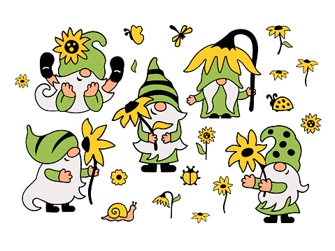 Summer gnomes with sunflower are on white background.