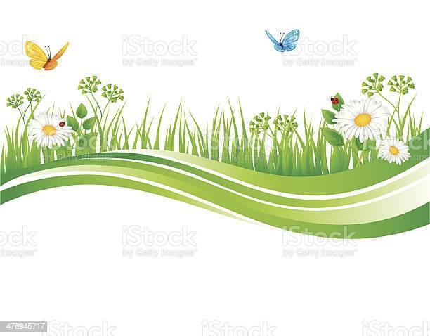 Summer grass vector id476945717?b=1&k=6&m=476945717&s=612x612&h=3vh fyoaqawv6cnqiuumtpjtmsojeosfiaam m8tbhw=