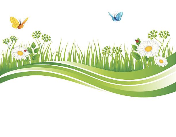 ilustrações, clipart, desenhos animados e ícones de grama de verão - bordas florais