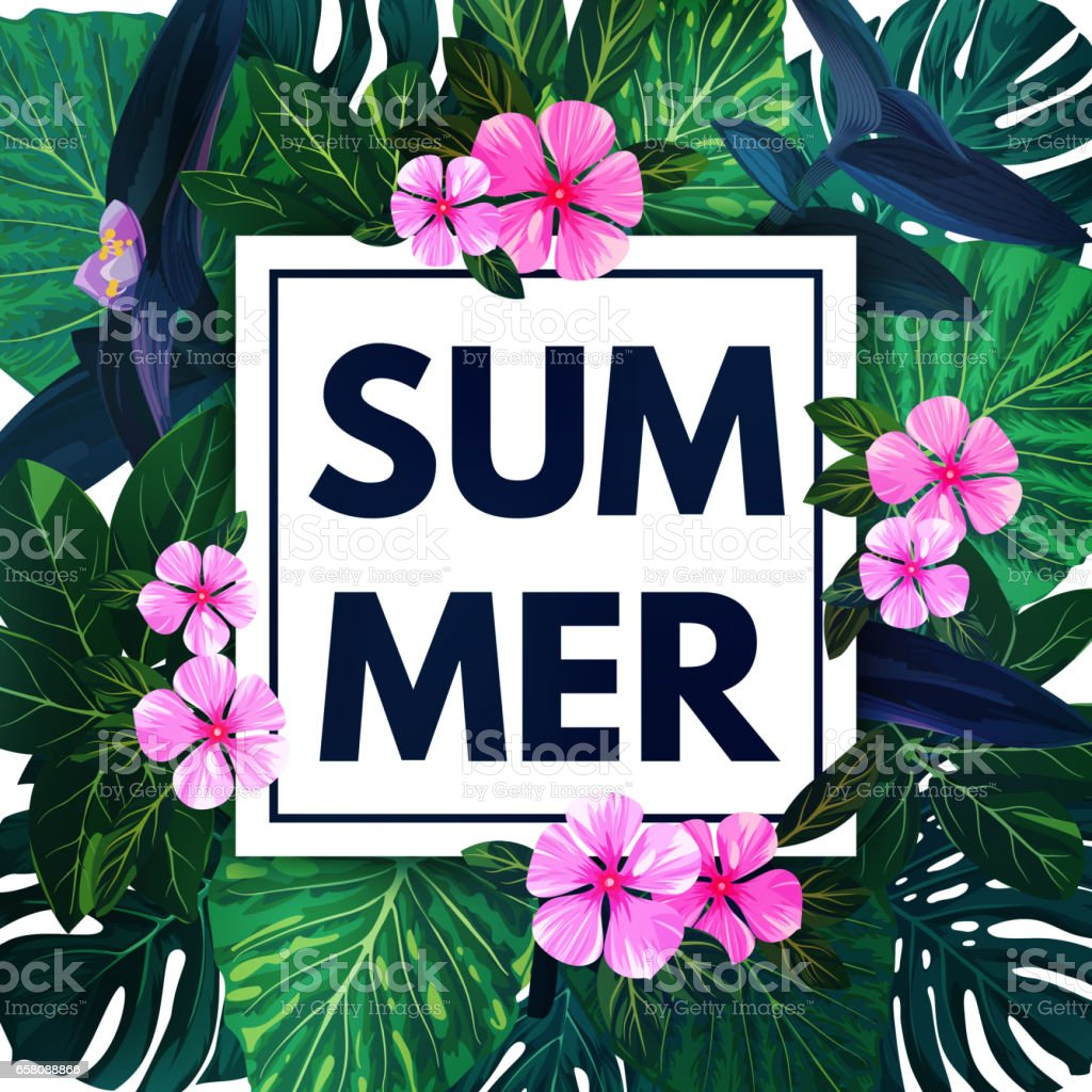 Summer hawaiian background with exotic palm leaves and pink flowers summer hawaiian background with exotic palm leaves and pink flowers tropical vector floral template royalty izmirmasajfo