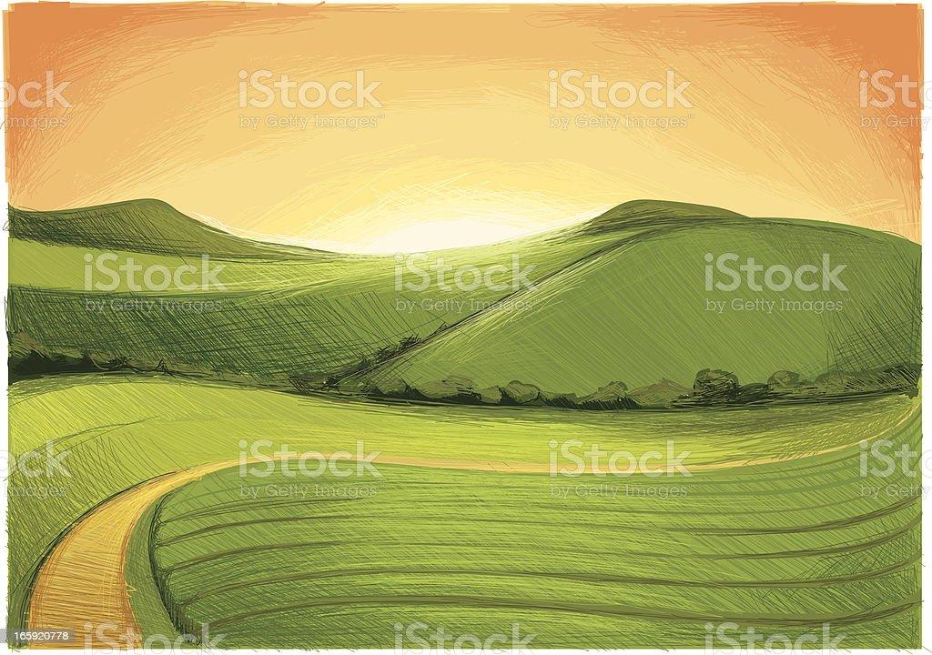 summer hills evening vector art illustration