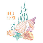 Summer Holiday Background. Seashells, Sea Star, Sand. Underwater Marine life