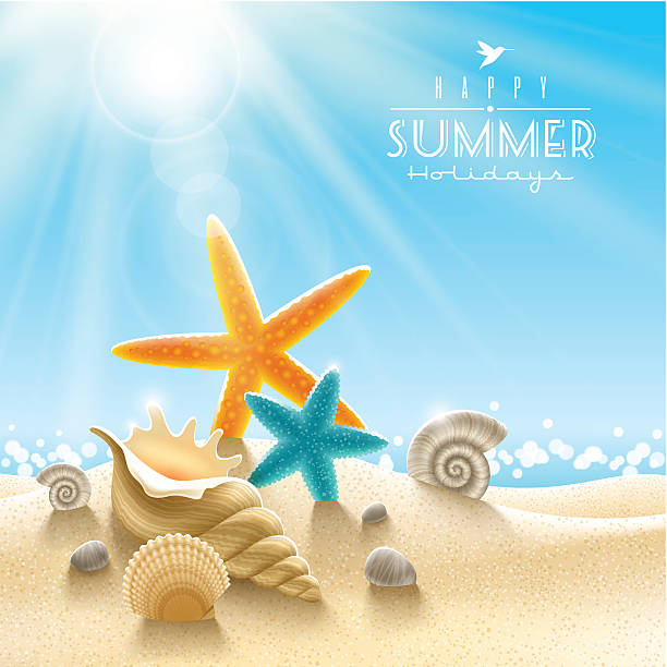 summer holidays illustration - seashell stock illustrations, clip art, cartoons, & icons