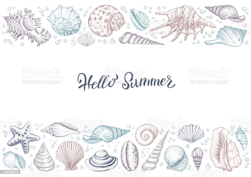 Sommer Horizontale Bunte Vintage Banner Mit Muscheln Stock Vektor ...