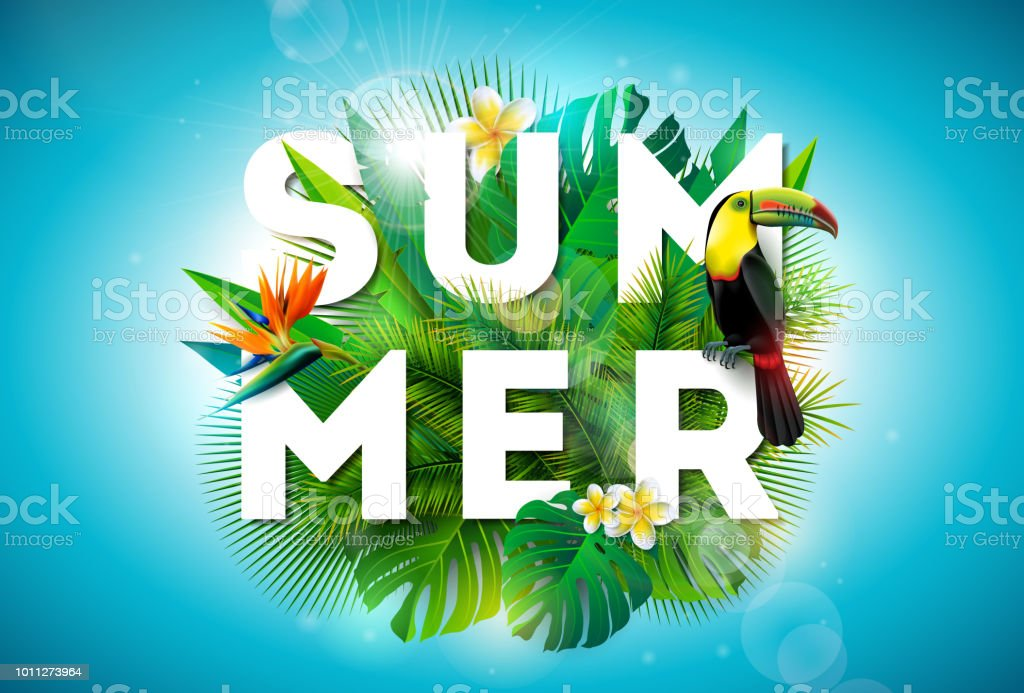 Summer illustration with toucan bird and parrots beak flower on tropical background. Exotic leaves with holiday typography element. Vector design template for banner, flyer, invitation, brochure, poster or greeting card. royalty-free summer illustration with toucan bird and parrots beak flower on tropical background exotic leaves with holiday typography element vector design template for banner flyer invitation brochure poster or greeting card stock illustration - download image now