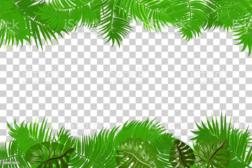 Summer Jungle Palm Leaf Frame Stock Illustration ...
