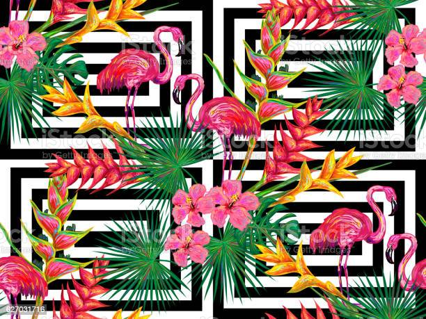 Summer jungle pattern with with flamingo palm leaves and flowers vector id627031716?b=1&k=6&m=627031716&s=612x612&h=0lxthb6c9vdqeajib3vexfmyi9wresrd4024qiie8jc=