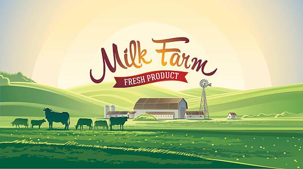 ilustraciones, imágenes clip art, dibujos animados e iconos de stock de paisaje de verano y la leche granja. - producto lácteo