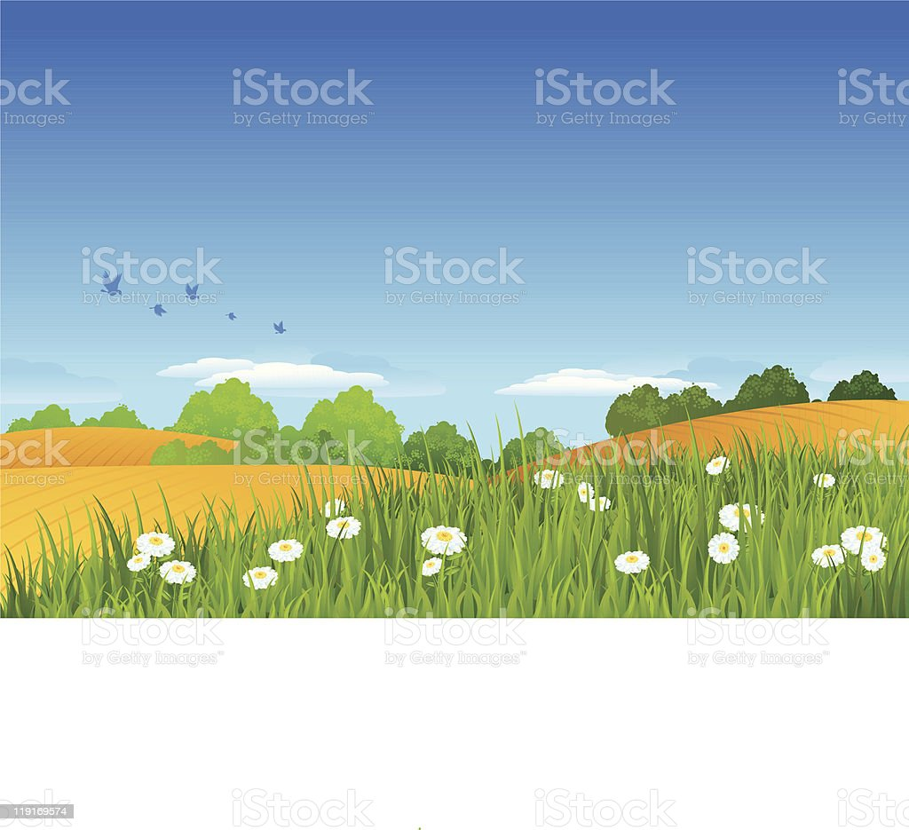 Summer Landscape royalty-free summer landscape stock vector art & more images of bird
