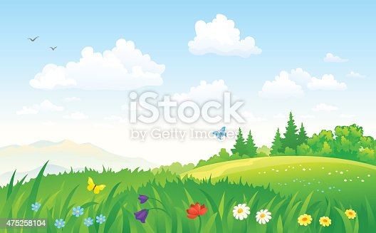 Vector illustration of a beautiful green summer landscape. RGB colors.
