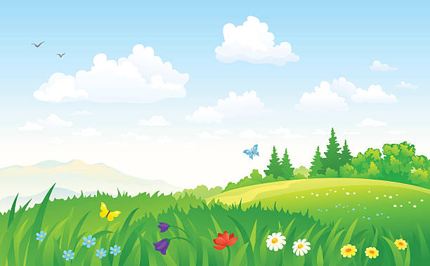 Summer landscape Vector illustration of a beautiful green summer landscape. RGB colors. backgrounds clipart stock illustrations