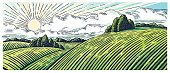 Rural landscape with hills and meadows, in the graphic style, illustration is hand-drawn and then converted in vector.
