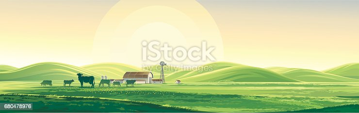 Vector illustration summer rural landscape from herd cows and farm, dawn above hills, elongated format.