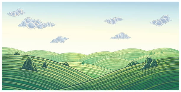 Summer landscape with hills and clouds vector art illustration