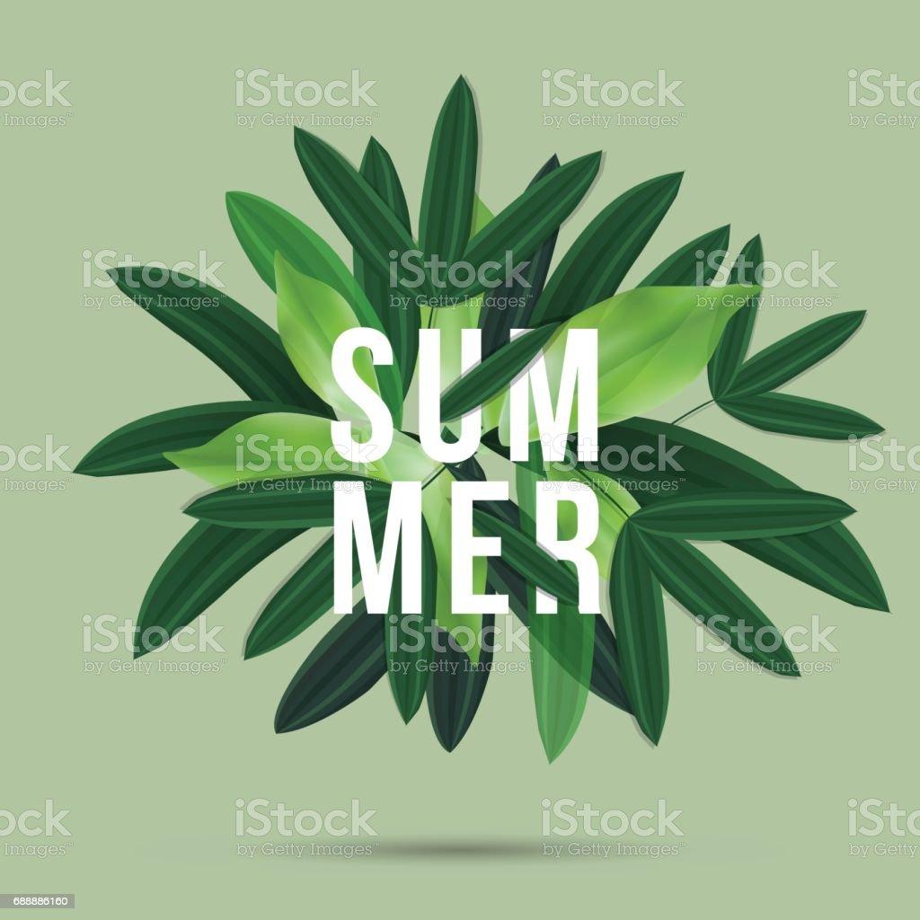 Summer lettet green Seasaon Background Green, Sale Banner voucher, vector illustration vector art illustration