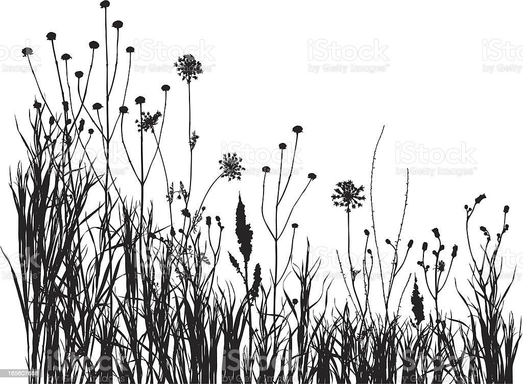 summer meadow 1 royalty-free stock vector art