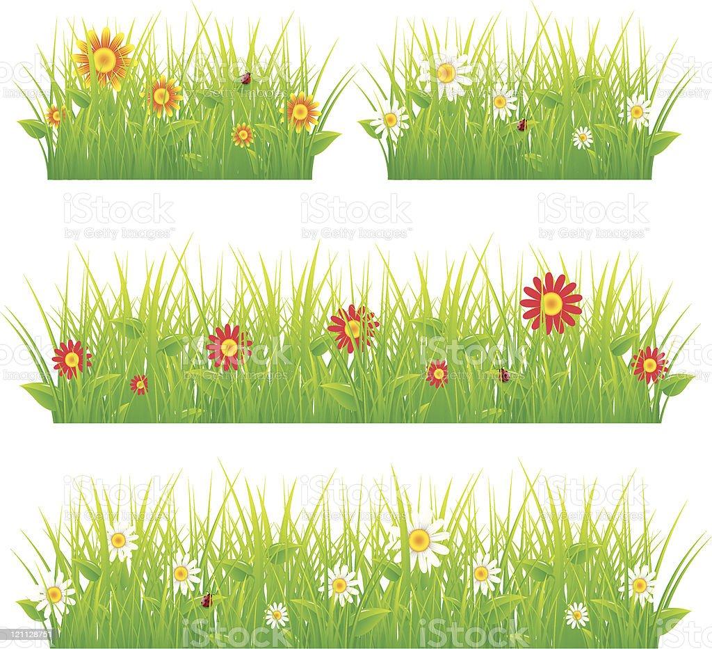 Summer meadow beautiful. royalty-free stock vector art