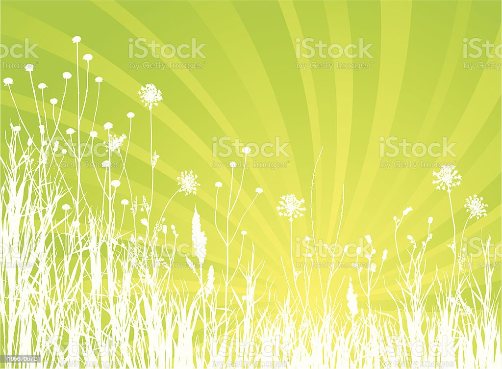 summer meadow royalty-free stock vector art