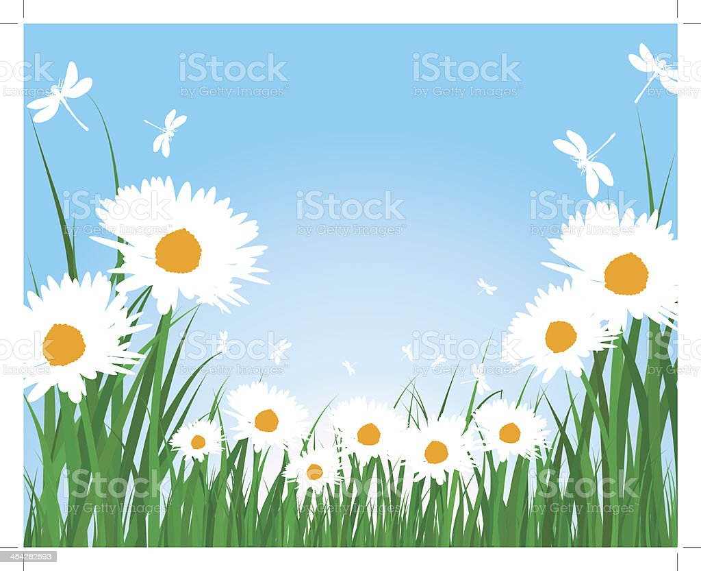 Summer meadow royalty-free summer meadow stock vector art & more images of abstract