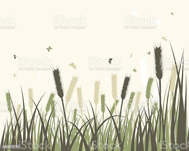 Summer meadow vector id500873781?b=1&k=6&m=500873781&s=612x612&h=ka6sf1rgpnbp0zywr 2gsl8jq93hnni7s6xtmx6myys=