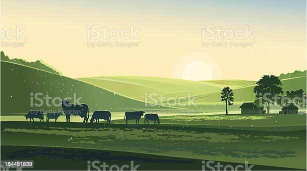 Summer Morning Stock Illustration - Download Image Now
