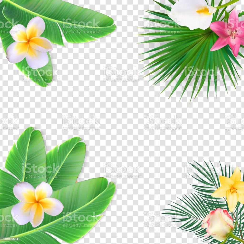 透明な背景のベクトル図夏自然花のフレーム - イラストレーションの