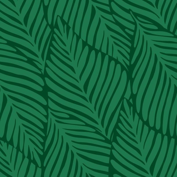 Summer nature jungle print. Exotic plant. Tropical pattern, Summer nature jungle seamless print. Exotic plant. Tropical pattern, palm leaves seamless vector floral background. banana patterns stock illustrations