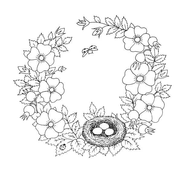 Summer or blooming rosehip with bird nest floral nostalgic elegant romantic old fashioned wreath contour coloring page vector art illustration